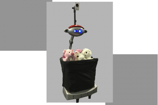 nanny-with-basket-and-toys